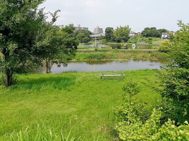19江津湖