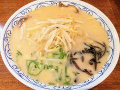 清麺-とんこつラーメン